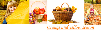 orange_yellow_season